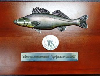 Победитель соревнований Трофейный судак